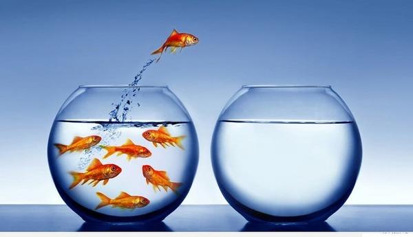 Thay đổi để thành công