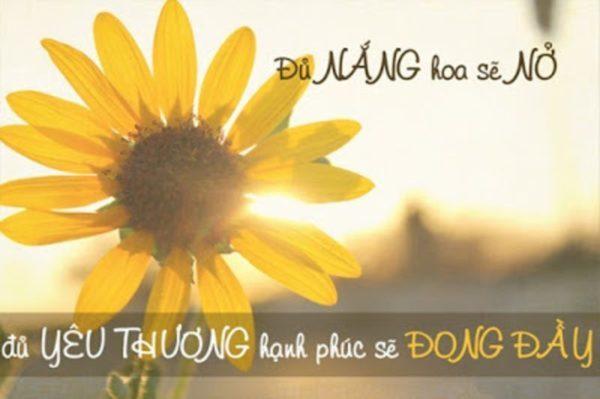 cho-di-yeu-thuong-de-nhan-lai-yeu-thuong